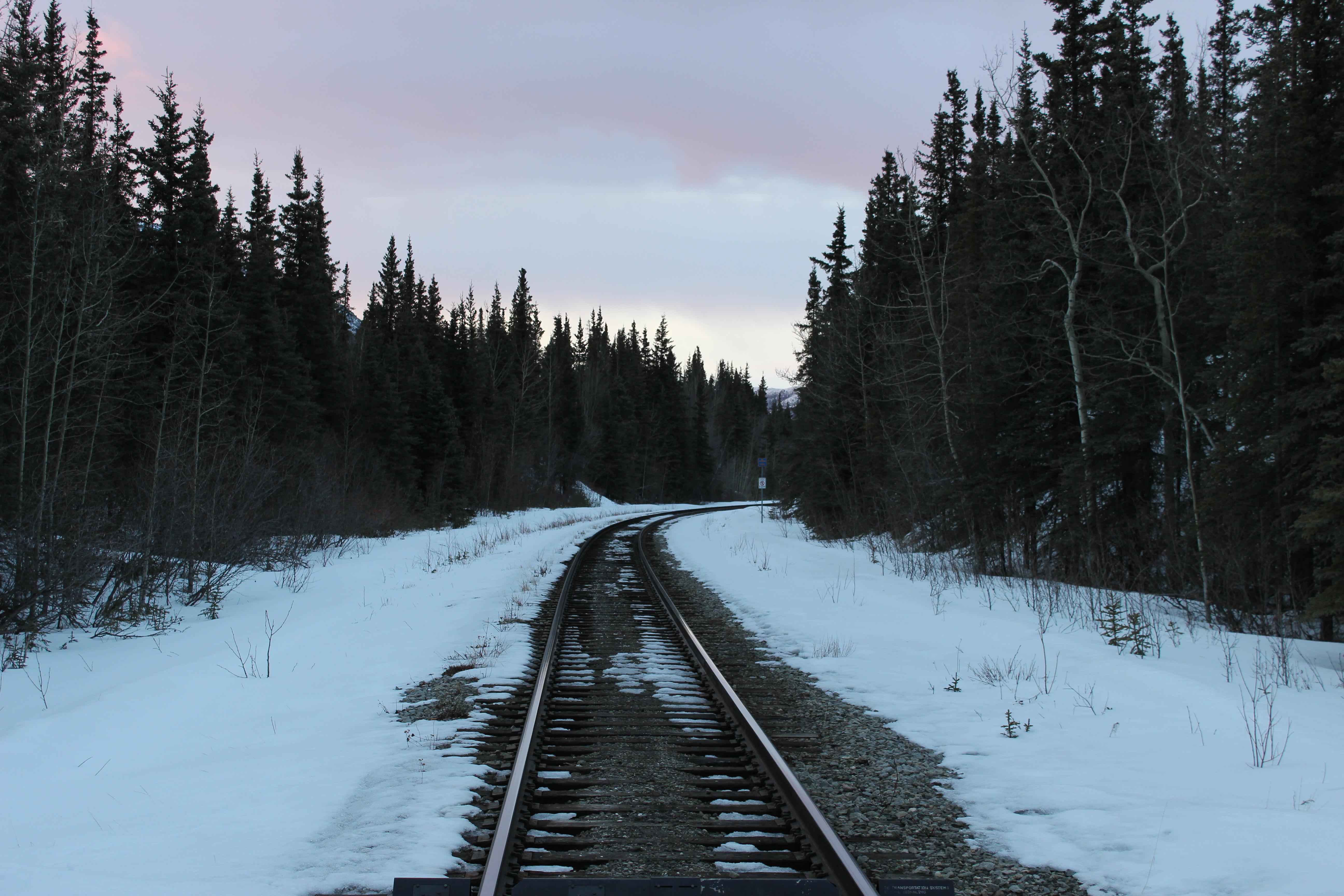 road path tracks snow - photo #42