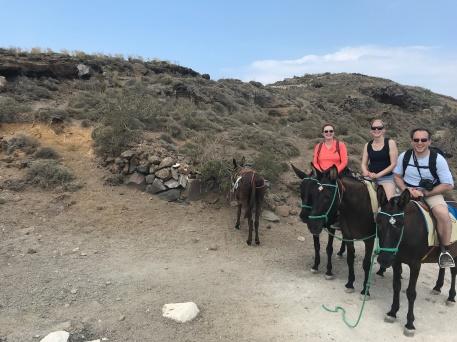 Donkeys on Santorini